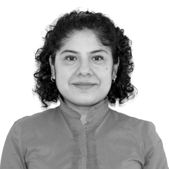 Ana Lilia Alcalá Gómez