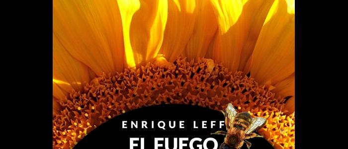 El fuego de la vida. Heidegger ante la cuestión ambiental