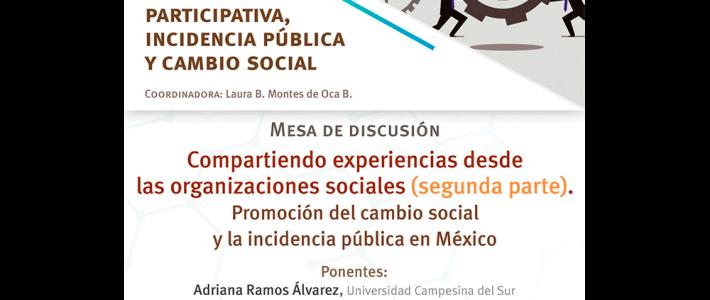 Compartiendo experiencias desde las organizaciones sociales. Promoción del cambio social y la incidencia pública en México (segunda parte)