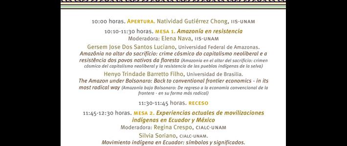 Impacto de los neoliberalismos en los pueblos indígenas de Brasil, Ecuador y México